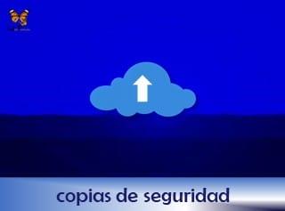 22-rotulo-servicio-copias-de-seguridad-web-papillon-320x237